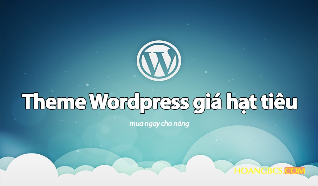 ban theme wordpress gia re - nguyenhuuhoang.com