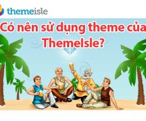 co-nen-su-dung-theme-wordpress-cua-themisle-nguyenhuuhoang-com-min